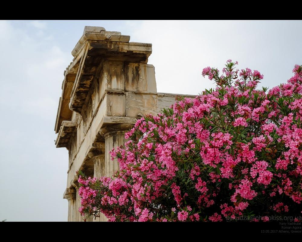 Афины. Форум