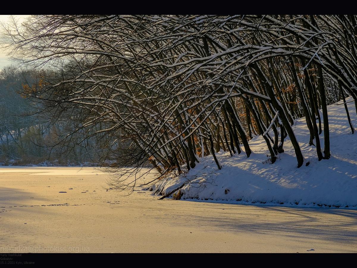 Зима в Голосеевском парке